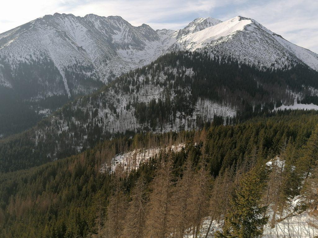 Widok na Tatry z Gęsiej Szyjki